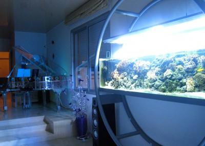 Aquarium d'eau de mer sur mesure créé et imaginé par Olivier Clavel