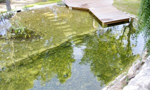 Bathing pond