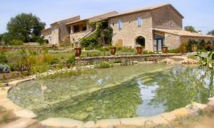 Natural bathing pond