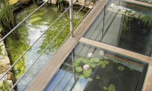 Outside pond with glass wallkway
