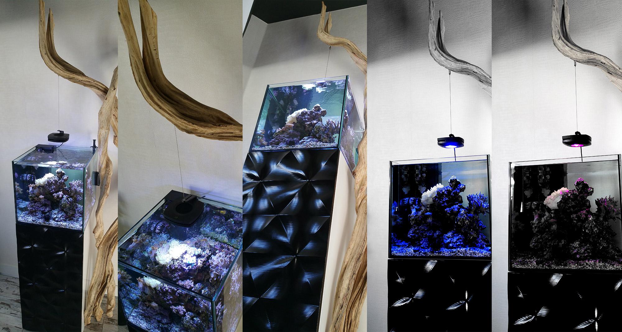 img_aquarium